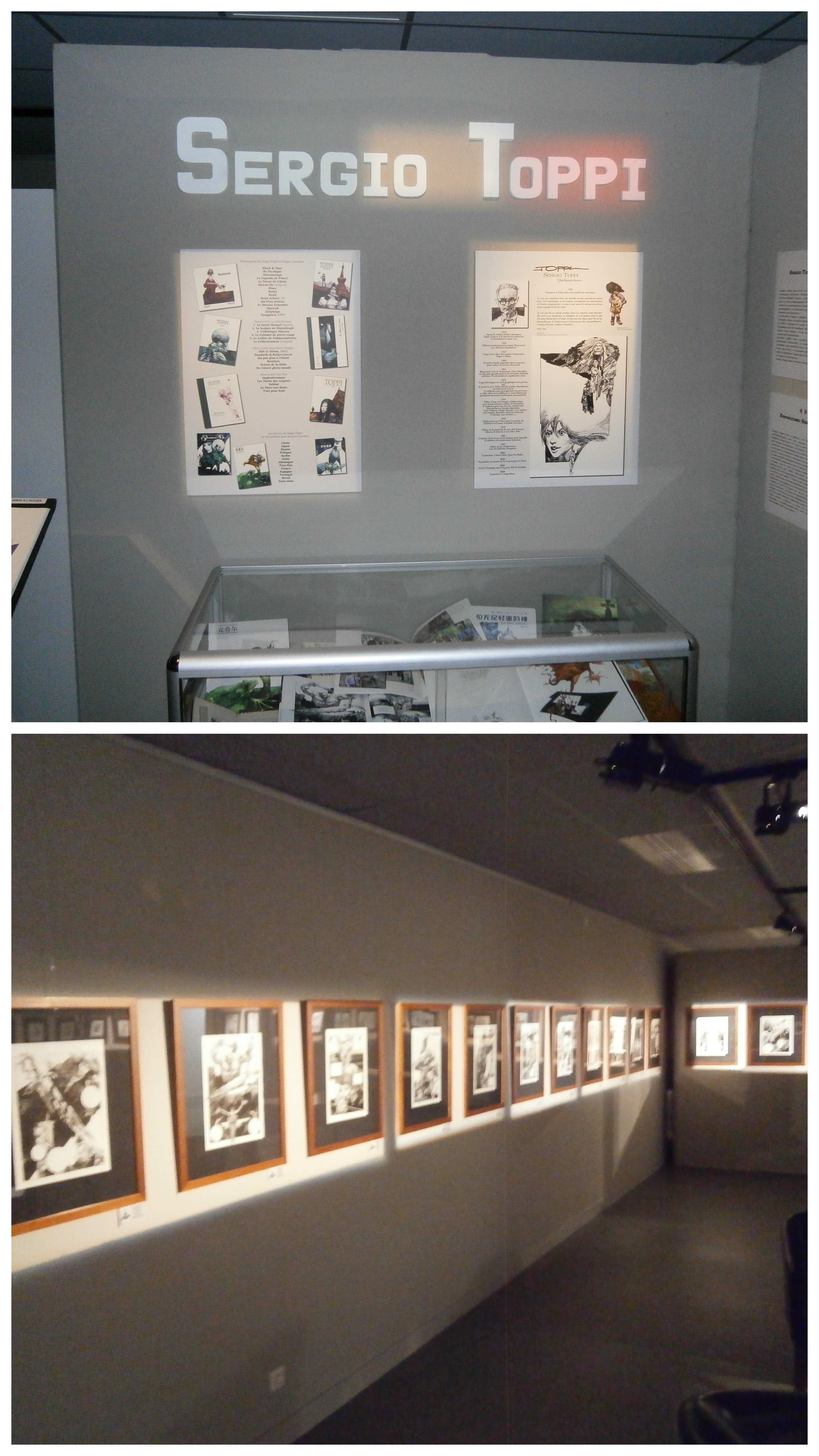 [inspi] Expositions / Musées / Salons... - Page 3 Toppi1